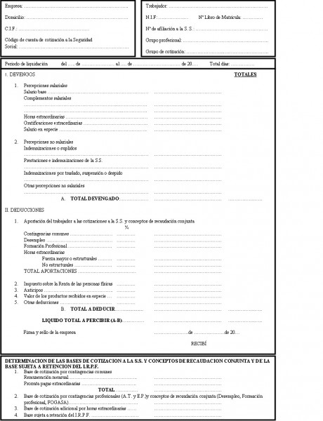 Nexus professional for Modelo nomina autonomo